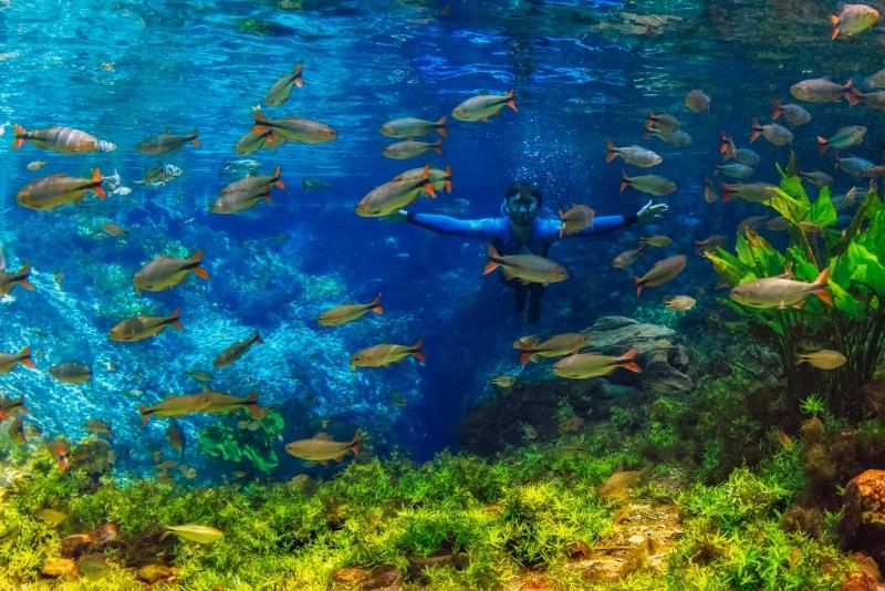 FOTO: AGÊNCIA SUCURI - Info Agência Sucuri: Veja como adquirir um pacote de viagem para Bonito (MS)