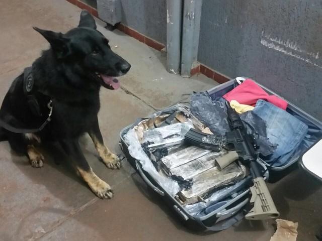 Maconha e Fuzil encontrados por cão farejador e Polícia Federal (Foto: PF/Divulgação)