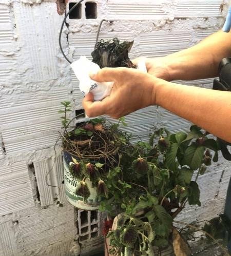 Durante ação ocorrida no dia 28 de julho, equipe policial encontrou entorpecente escondido em um compartimento secreto na parede da residência